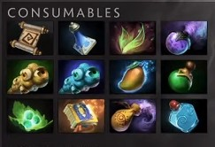 Consumable Items